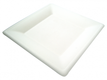"10"" Square Bagasse Plate"