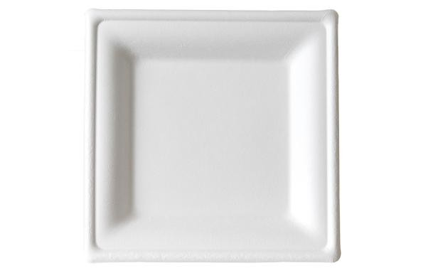6\  Premium Sugarcane Biodegradable Square Plates (EP-P021) Compostable  sc 1 st  FoodBizSupply.com & Biodegradable Plates Compostable 6 3/4 Inch Solo Bare Square ...