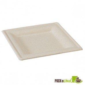 Square Natural Sugarcane Biodegradable Plate