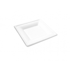 "6"" Square Bagasse Plate"